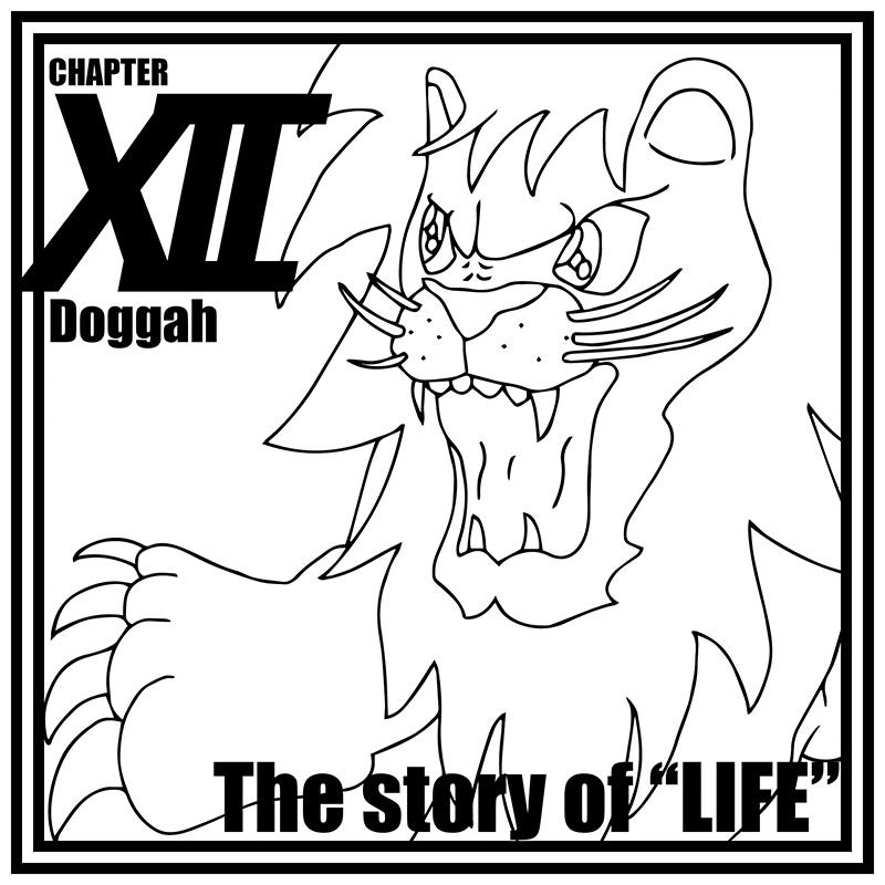 第 12 章